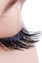Lash & Brow Services at Cheynes Hairdressing & Beauty Salon in Edinburgh