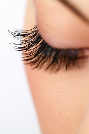 a90f371d949 Longer Lashes & Perfect Eyebrows at Cheynes Hair Salons in George Street &  Lothian Road,