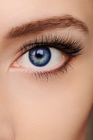 Longer Lashes & Perfect Eyebrows at Cheynes Hair Salons in George Street & Lothian Road, Edinburgh